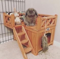 Wooden Fort for Pet Bunnies & Rabbits