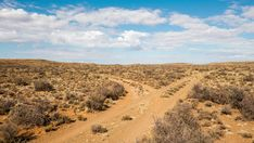Stock Footage of A slow linear timelapse in a remote Karoo landscape with a dirt road that splits and slow moving clouds against a blue sky. Explore similar videos at Adobe Stock Moving Clouds, Plant Crafts, Travel And Tourism, Old Art, Geology, Stock Footage, Remote, Country Roads, Tours