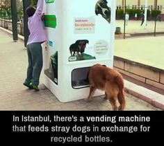https://www.facebook.com/WPROFM/photos/a.74075314092.75711.8607539092/10152439053634093/?type=1 IMAGINE EVEN IN TURKEY MAJORITY MUSLIM NATION STRAY DOGS ARE FED :) WITH RECYCLED BOTTLES AS COLLATERAL