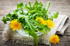 Where to buy organic dandelion root tea online? Compare products from leading tea brands. Tasting notes, tea tips, 6 best dandelion root teas to buy online. Dandelion Root Tea, Dandelion Leaves, Dandelions, Candida Cleanse, Candida Diet, Fruit Kaki, Dandelion Salad, Dandelion Benefits, Home