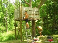 The kind of tree house I had in my back yard!!! A good start