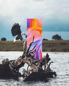 Art Print by Dorian Legret - X-Small Art And Illustration, Illustration Design Graphique, Illustrations, Glitch Art, Glitch Kunst, Art Du Collage, Collage Design, Art Design, Kunst Poster
