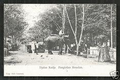 Pangkalan-Brandan-Jl-Radja-Elephant-Sumatra-Indonesia-1907-stamp