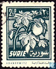1956 Syria - Fruits