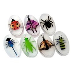 These lifelike insects are actually finger puppets that are embedded into a bar of high quality glycerin soap.  Trying to get the insect will take hours of good clean fun. Soap is approximately 4oz. and is unscented.