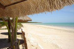 Ipioca Beach - Maceió, Alagoas