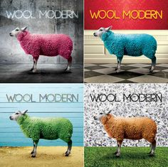 international_wool_awareness_campaign_lacks_industrial_design_partner