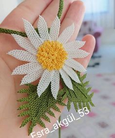 Image may contain: plant and flower Needle Lace, Elsa, Crochet Patterns, Flowers, Plants, Diy, Instagram, Jewelry, Sultan