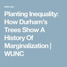 Planting Inequality: How Durham's Trees Show A History Of Marginalization | WUNC