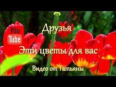 Друзья, цветы для вас Летнее настроение