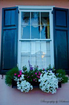 window boxes #inspiredbytherug @tufenkiancarpet