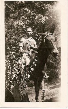 "breathitt county | Pleasant Mosley of Breathitt County, Kentucky on ""Old Dick"" The horse."