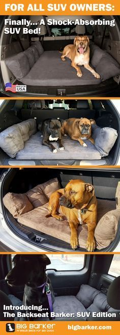 The back of an SUV is really spacious for a big dog, and now you can protect them from the painful bumps that make him or her bang off the hard plastic floor.  Available now from Big Barker:  https://bigbarker.com/products/suv-bed #DogBeds