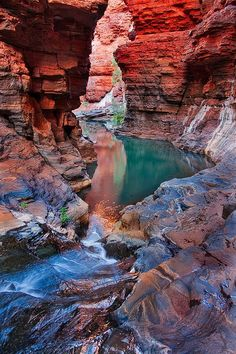 Karijini National Park : Your Travel Guide Places To Travel, Places To See, Travel Destinations, Travel Route, Travel Logo, Vacation Travel, Hawaii Travel, Holiday Destinations, Parc National