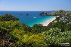 Hahei - Coromandel Auckland, Video Nature, The Beautiful Country, Blog Voyage, Sound Waves, Farms, New Zealand, Wander, Places