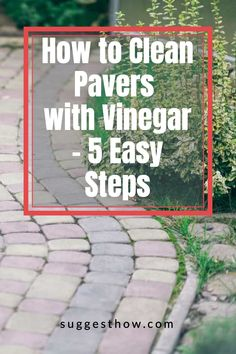 Keeping your pavers clean is an important part of paver maintenance. Dirt and grease can buildup and get into the gaps to make them look dirty. So, how do you clean pavers with vinegar? Although there are many ways, this is the best way to clean pavers efficiently. Follow these 5 steps guide for an amazing result. #homehacks #cleaning #DIY #home #cleaningwithvinegar Cleaning Pavers, Cleaning Diy, Deep Cleaning Tips, Bathroom Cleaning, Using Vinegar To Clean, Yoga For Flat Belly, Paver Stones, How Do You Clean, Clean And Shiny