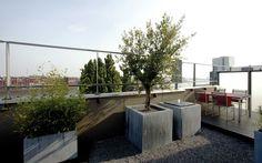 Minimalistisch dakterras in Amsterdam met schitterend uitzicht over 't IJ. Aangelegd en ontworpen door tuinarchitectenbureau Martin Veltkamp Tuinen.