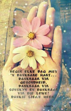 Begin elke dag met n dankbare hart. Good Morning Good Night, Good Morning Wishes, Greetings For The Day, Sleep Quotes, Afrikaanse Quotes, Inspirational Qoutes, Motivational, Goeie More, Bible Prayers