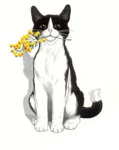 Felix , the UK cat featured in an popular cat food advert. Crazy Cat Lady, Crazy Cats, I Love Cats, Cute Cats, Cat Drawing, Cat Tattoo, Animal Drawings, Cat Art, Cats And Kittens