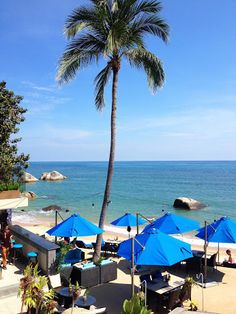 Royal Beach Boutique Resort & Spa | Koh Samui | Lamai Beach