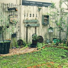 The planters under tree Garden Paths, Garden Art, Garden Design, Backyard Plan, Recycled Garden, Garden Junk, Small Space Gardening, Natural Garden, Garden Table