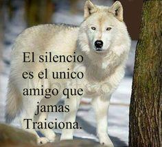 El silencio es el único amigo que jamás traiciona #motivacion #superacion #reflexiones #exito