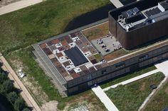 Inspiratie: groendak van NIOO onderzoeksdak EN mooi uitzicht uit de kantine en vanaf het dakterras.