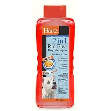 Bed Bug Shampoo For Humans