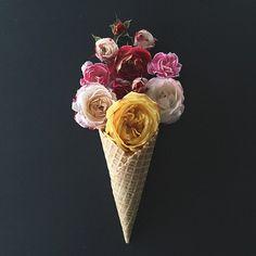 """floralls: """" cones by kellysnapshappy """" Flower Petals, My Flower, Flower Art, Flower Power, Ice Cream Flower, Cream Flowers, Gardenias, Dessert Decoration, Foto Art"""