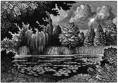 Chris Wormell, Frog Pond for Mahogany, TBWA, wood engraving