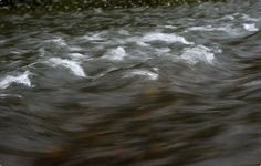 Water churns through a small rapid. Schuylkill River may be best local fishery nobody knows about |  Reading Eagle - BERKSCOUNTRY #Schuylkill #Schuylkill-River #river #water #fish #fishing #fly-fishing  #minnow #smallmouth-bass #bass #fishing-rod #heron
