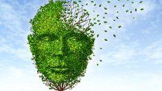 #Detectan un posible freno al avance del Alzheimer - Infobae.com: Infobae.com Detectan un posible freno al avance del Alzheimer Infobae.com…