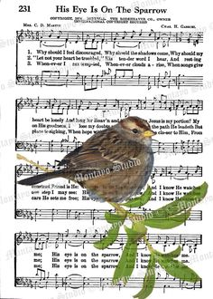 HIS EYE On The Sparrow  Wildlife Nature bird Spiritual Hymn  Song Page  4 x 6  print   F R E E  Shipping