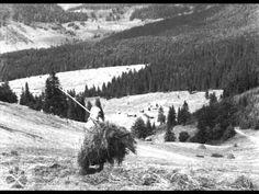 DSSk Povoja - Ej, slniečko horúce; Bola som na hubách (Slovak Meadow Songs)