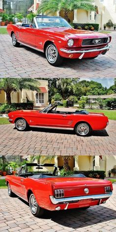 very nice 1966 Ford Mustang Convertible - Auto 2019 1966 Mustang Fastback, Ford Mustang 1964, Red Mustang, Mustang Gt500, Car Ford, Ford Mustangs, Mustang Convertible For Sale, Mustang Restoration, Classic Mustang