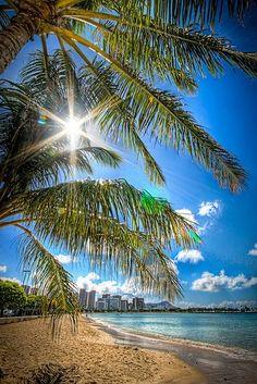 Sunny Ala Moana, Oahu