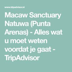 Macaw Sanctuary Natuwa (Punta Arenas) - Alles wat u moet weten voordat je gaat - TripAdvisor