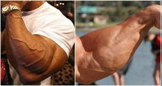 Build MassiveForearms With These Two Forearm Workout Routines If your goal is to build a complete, symmetrical physique, you simply can't allow yourself to avoid the forearms. Your forearms are a complex group of muscles composed of wrist extensors, wrist flexors and the brachioradialis muscles, that rarely gets the attention it deserves. Working on your …
