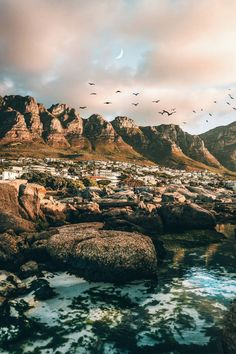 #CampsBay #Shore #StockPhotography #Wallpaper Sea, Sky, Tree, Reflection - Follow @extremegentleman for more pics like this!