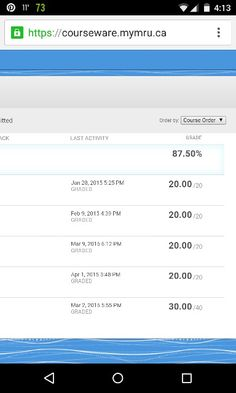 Got 100% in all my finance quizzes! Now I'm going into the final exam with an 87.5% :D