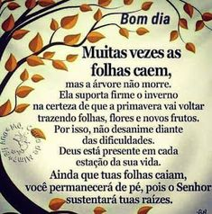 🤶🏻🎅🏻: não desanime diante das dificuldades... Good Afternoon, Morning Quotes, Alice, Mary, Humor, Night, Rose, Design, Best Wishes Messages