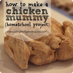 Step-by-step instructions for how to make a chicken mummy {homeschool project}   This is so gross but the kids learned a lot!