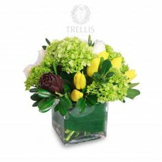 High design packs a punch on this compact but powerful arrangement. Green hydrangea and pittisporum is the backdrop as pink roses and cheerful yellow tulips with baby artichoke is the accent of surprise and delight!