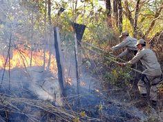 Blog do Osias Lima: Queimadas na Região Norte: Roraima e Tocantins ocu...