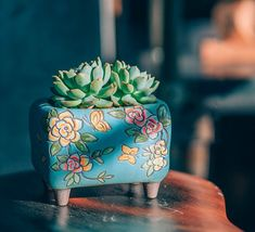 Set of 2 - Beautiful Flower Style terracotta Planter,Ceramic Planter,Succulent Planter, Succulent Pot,Cactus Planter Container Succulent Pots, Planting Succulents, Ceramic Planters, Planter Pots, Ceramic Decor, Flower Pot Design, Faux Plants, Ceramic Flowers, Simple Gifts