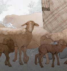 Ovella guirra / Ovejas guirras Moose Art, Animals, Museum, Animales, Animaux, Animal, Animais