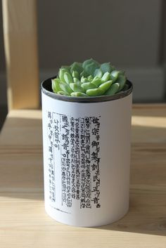 Recycled Tin Can Crafts | tin-projecty-135.jpg