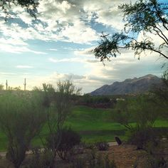 Nothing like a Tucson desert view!   The Westin La Paloma Resort and Spa