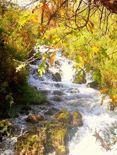 Enjoy Utah!: Cascade Springs