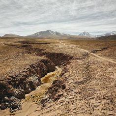 Cuando planeas ir a #Atacama imaginas algo increíble por las imágenes que podes encontrar en Internet pero Atacama es mucho más. La gente vive en condiciones muy duras pero no por eso deja de ser amable y cordial. Hay animales donde parece imposible que alguien sobreviva y los paisajes son otro mundo. Si tenes la oportunidad y la suerte de poder visitar este desierto en la cordillera te puedo asegurar que no te vas a arrepentir.